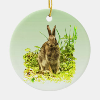 Herbe verte et ornement de lapin de Brown