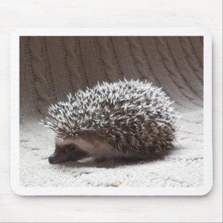 hérisson gris de bébé tapis de souris