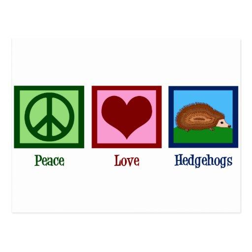 Hérissons d'amour de paix cartes postales