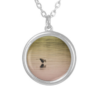 Héron de grand bleu sur l'arrière - plan de collier