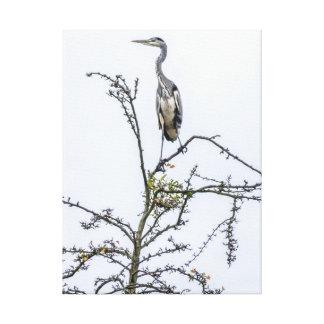 Héron sur une copie de toile d'arbre