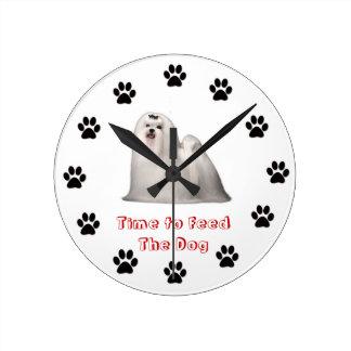 Heure d'alimenter le chien maltais horloges