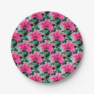 Hibiscus rose vif assiettes en papier