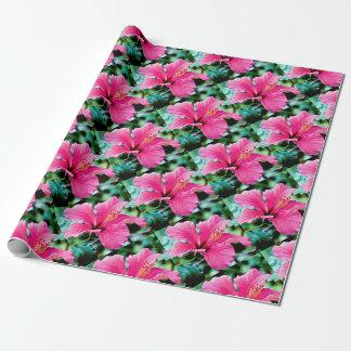 Hibiscus rose vif papiers cadeaux
