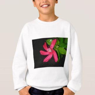 hibiscus rouge sweatshirt
