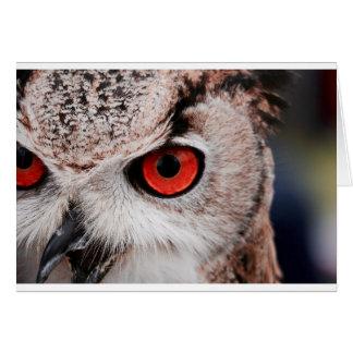 Hibou aux yeux rouges carte de vœux
