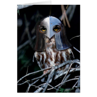 Hibou de chevalier carte de vœux