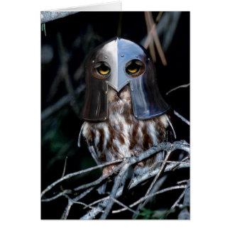 Hibou de chevalier cartes