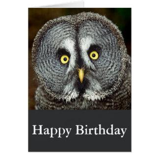 Hibou de grand gris - carte de joyeux anniversaire