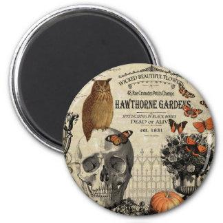 Hibou et crâne vintages modernes de Halloween Magnet Rond 8 Cm