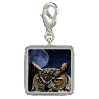 Hibou et lune bleue breloque avec photo