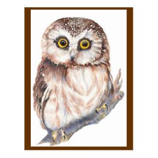 Hibou mignon - collection d oiseau d aquarelle carte postale
