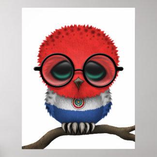 Hibou ringard personnalisable de bébé du Paraguay Posters