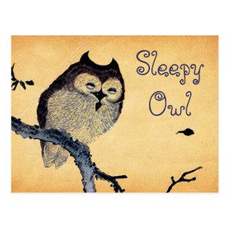 Hibou somnolent vintage carte postale