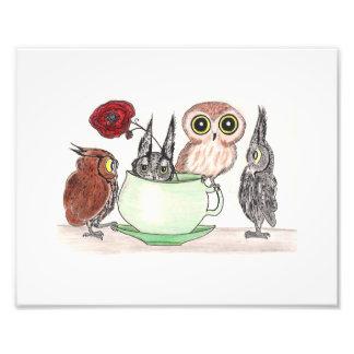 Hiboux à l'heure du thé impression photographique
