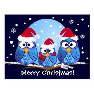 Hiboux avec des casquettes de Père Noël Carte Postale
