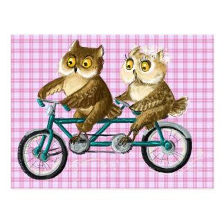 Hiboux de bicyclette carte postale