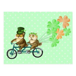 Hiboux irlandais de bicyсle avec des baloons de carte postale