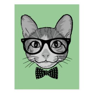 Hippie de chat avec la cravate d'arc de pois cartes postales