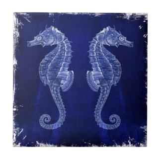 hippocampes côtiers de bleu d'océan d'amant de carreau