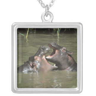 Hippopotame, (amphibius de H.), mère et jeunes Pendentif Carré