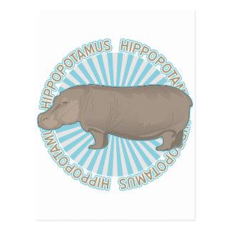 Hippopotame classique carte postale