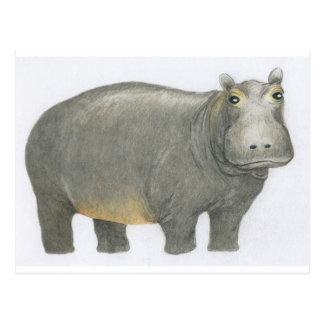 Hippopotame de base carte postale