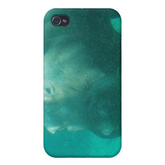 Hippopotame sous le cas de l iPhone 4 de l eau Coques iPhone 4