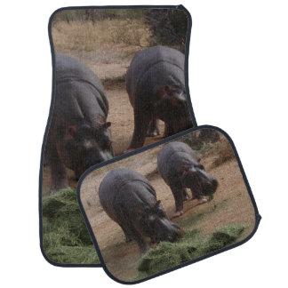 hippopotames tapis de sol