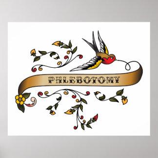 Hirondelle et rouleau avec le Phlebotomy Posters
