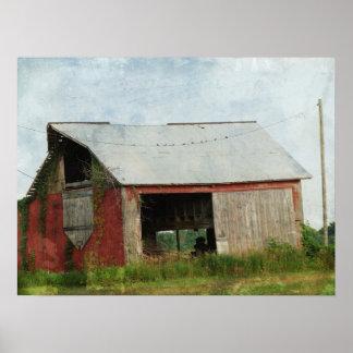 Hirondelles de grange sur la ligne affiches