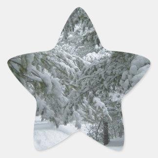Hiver dans la forêt sticker en étoile
