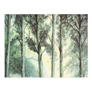 Hiver vintage, forêt givrée carte postale