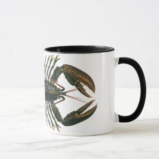 Homard vintage, crustacé marin de la vie d'océan tasses
