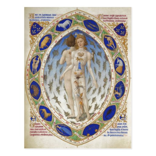 Homme anatomique, Les TR ? richesse Heures du duc  Cartes Postales