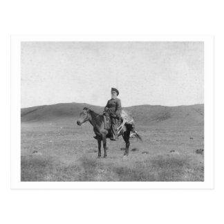 Homme sur le cheval avec la photographie massacrée cartes postales