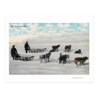 """Hommes avec la luge tirée par des chiens """"de cartes postales"""