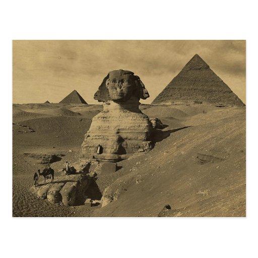 Hommes et chameaux sur la patte du sphinx, pyramid carte postale