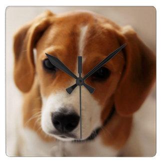 Horloge Carrée Chiot 2 de beagle