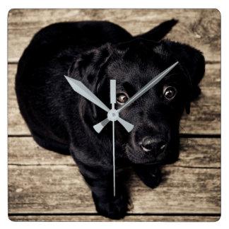 Horloge Carrée Chiot noir de Labrador