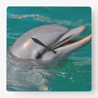 Horloge Carrée Haut étroit de dauphin