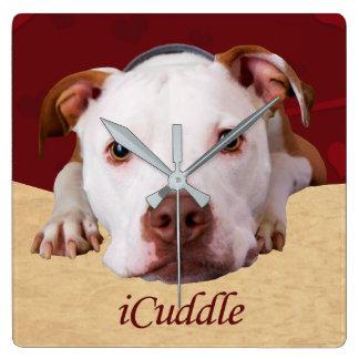 Horloge Carrée iCuddle Pitbull