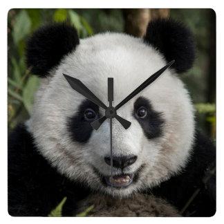 Horloge Carrée Jeune panda heureux, Chine
