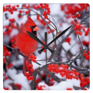 Horloge Carrée Mâle cardinal du nord, hiver, IL
