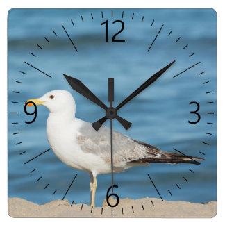 Horloge Carrée Mouette marchant sur la plage