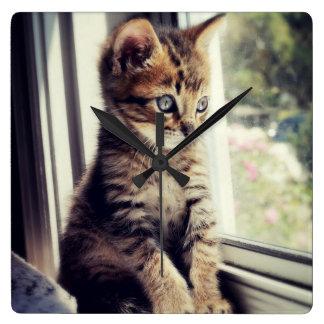 Horloge Carrée Observation tigrée de chaton