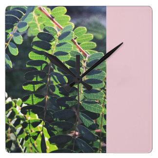 Horloge Carrée Oiseau du paradis mexicain sur le rose