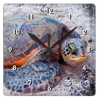 Horloge Carrée Photo amicale de plan rapproché de tortue de mer