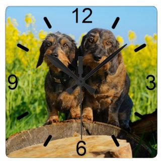 Horloge Carrée Photo mignonne d'animal familier de deux de