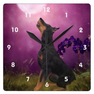 Horloge Carrée Pinscher de dobermann regardant l'art d'animal de